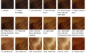 hair-weave-color-chart.jpg
